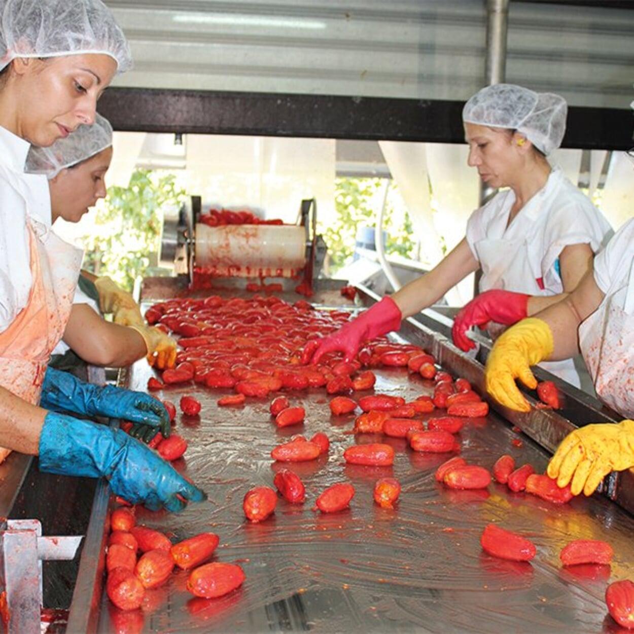 Verarbeitung der Tomanten