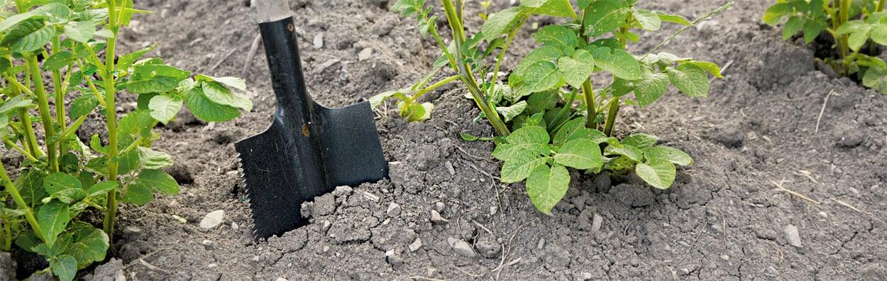 Bodenanalyse beauftragen