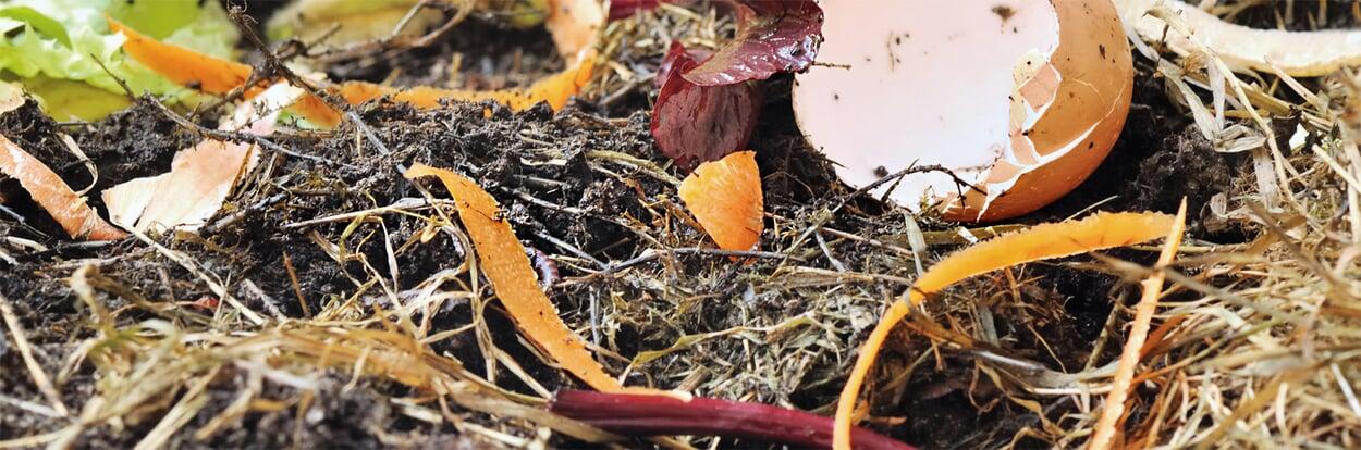 Komposthaufen kontrollieren und feucht halten