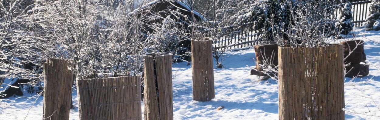 Winterschutz überprüfen