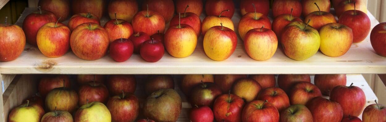 Wöchentlich das Obst- und Gemüselager kontrollieren