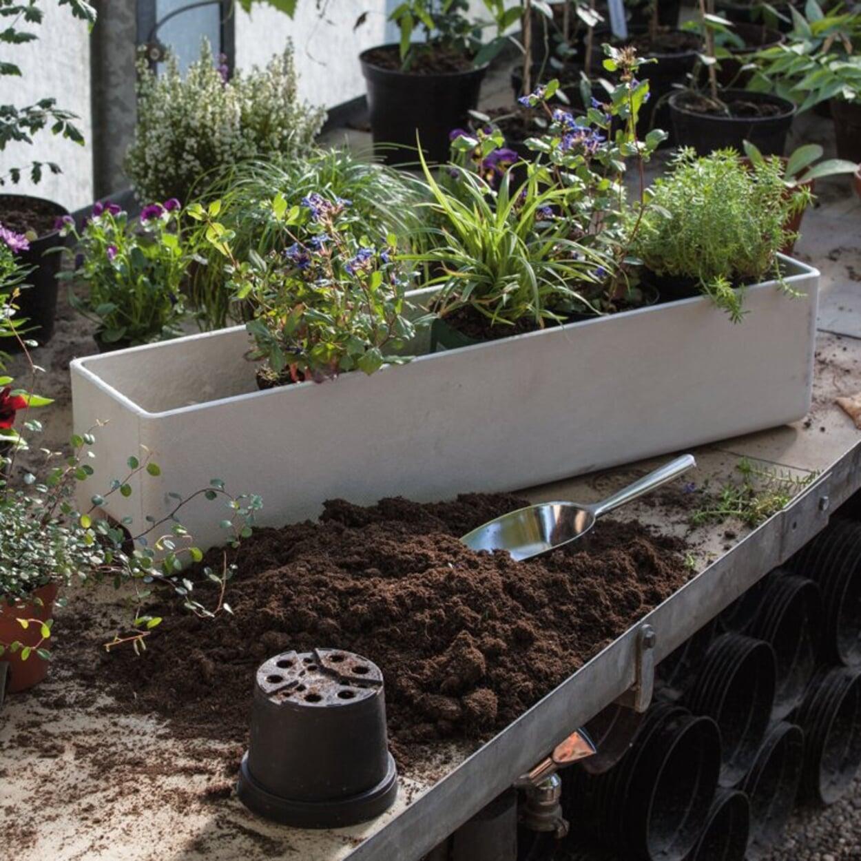 Für die Herbstbepflanzung großvolumige Balkonkästen verwenden
