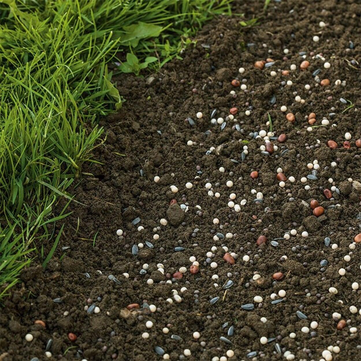 Brachliegende Flächen mit einer Gründüngung schützen