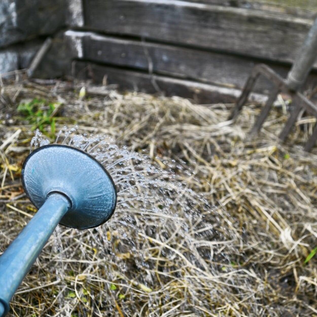Zu trockenen Kompost mit einer Gießkanne befeuchten