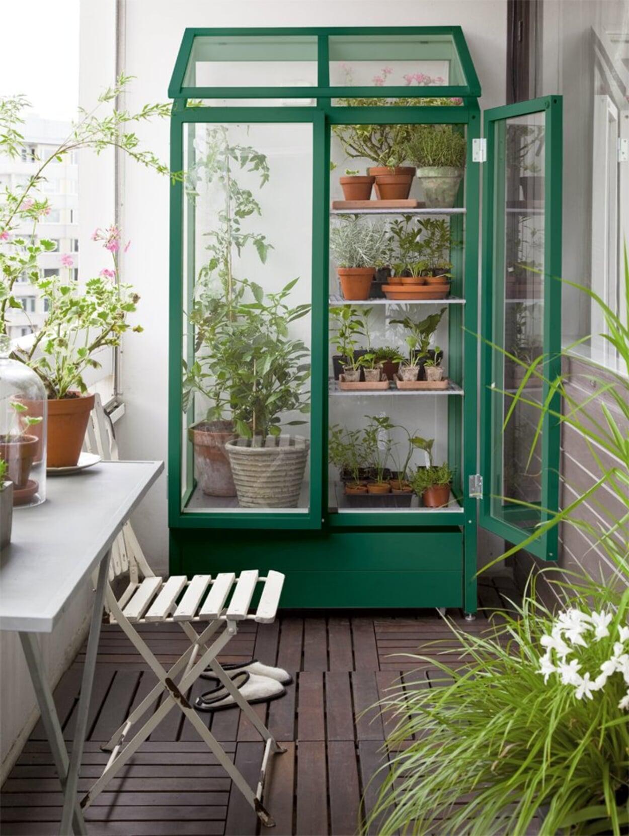 Kleines Gewächshaus für die Pflanzenanzucht auf dem Balkon