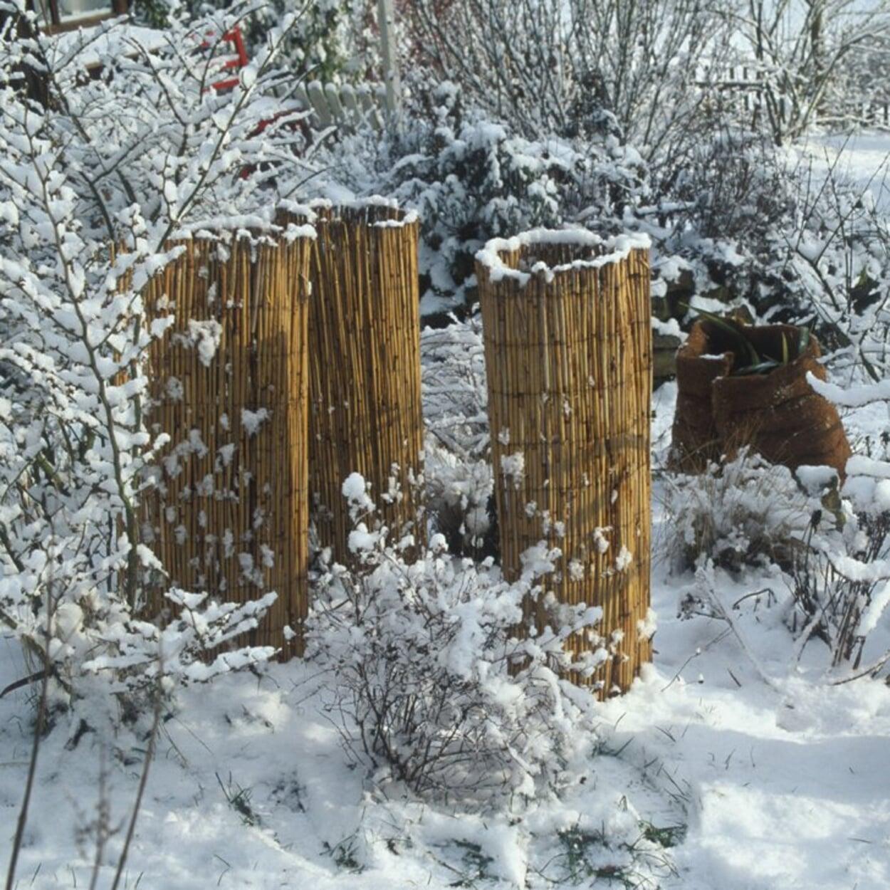 Schnee von bepflanzten Töpfen und Kübeln schieben