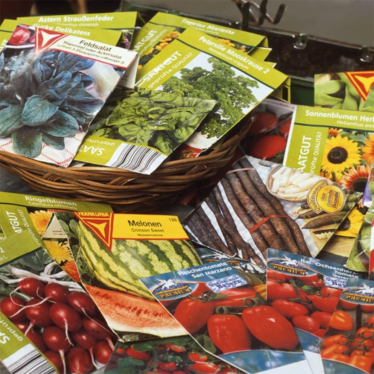 Den vorhandenen Saatgutbestand sichten