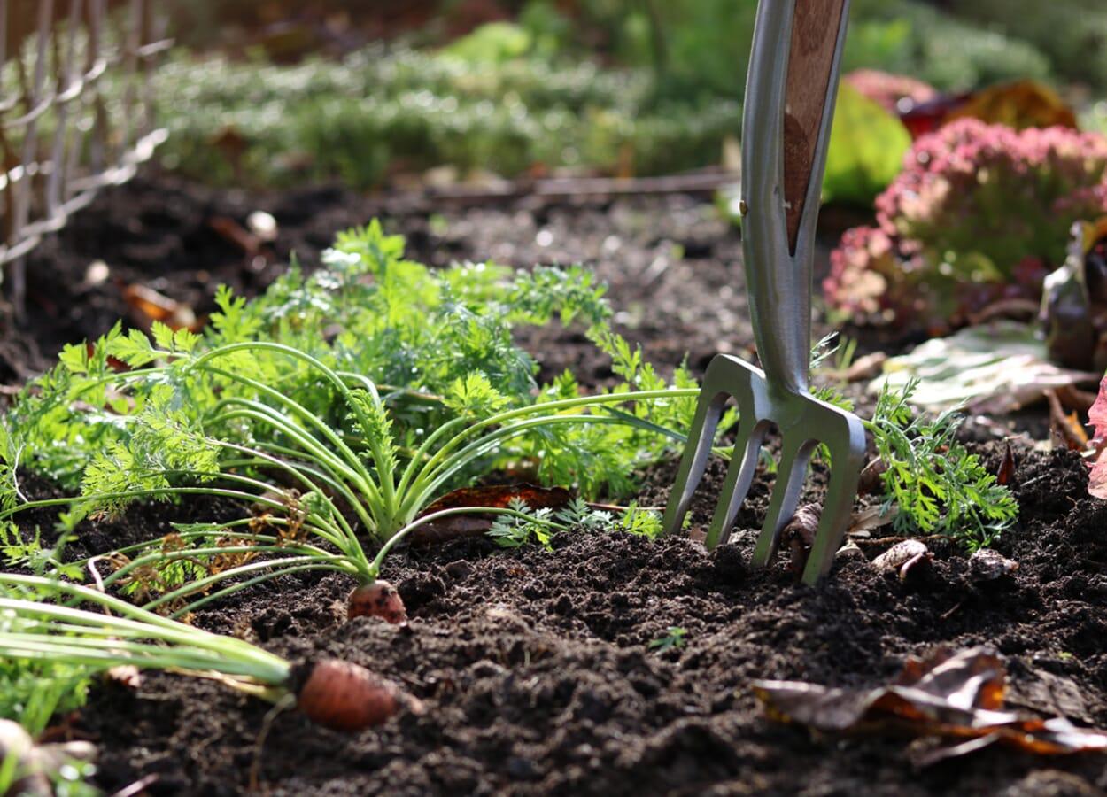 WErkzeuge für die Bodenbearbeitung