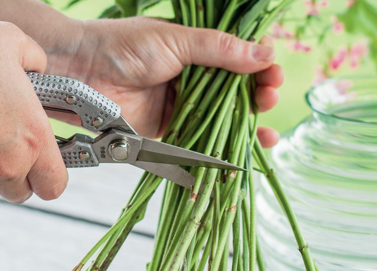 Filigrane Schere für weiche Triebe