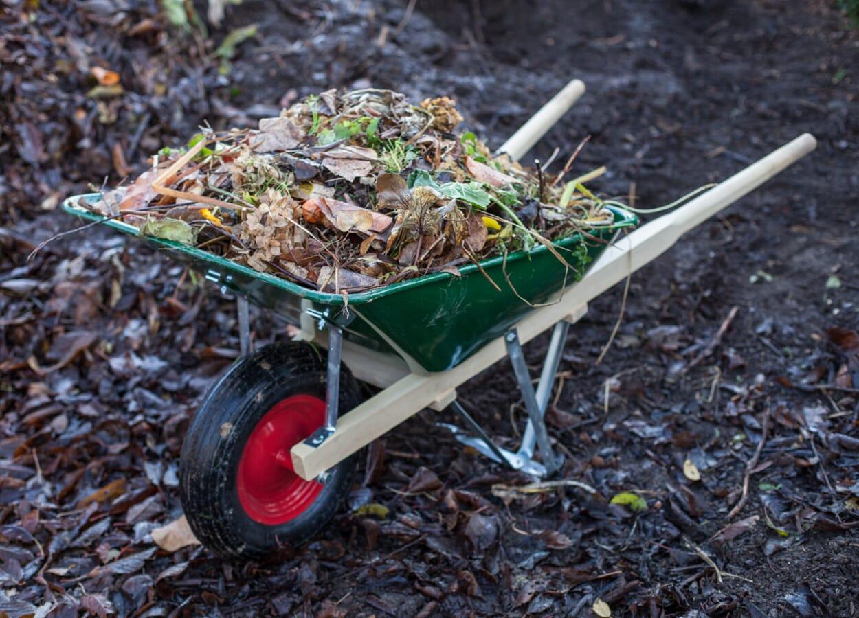 Tipps zur Kompostierung