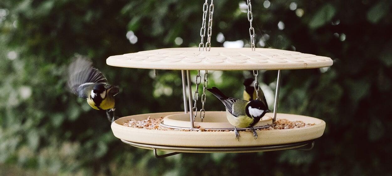 Futterhaus Keramik für Vögel