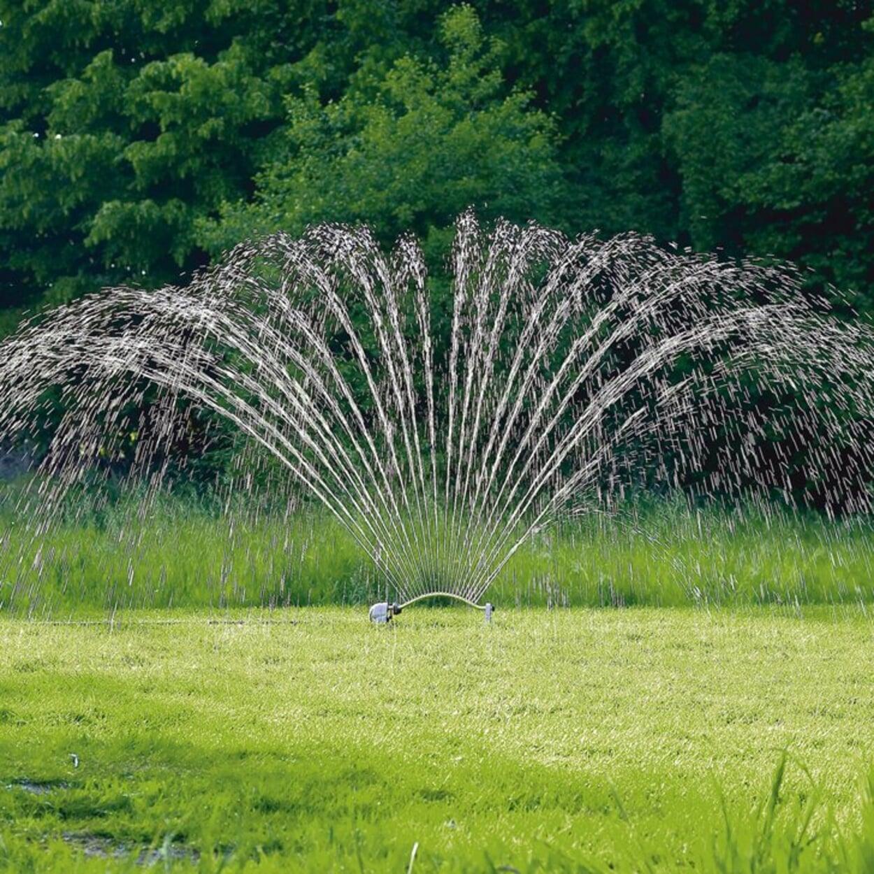 Für die Rasenbewässerung einen Regner aufstellen