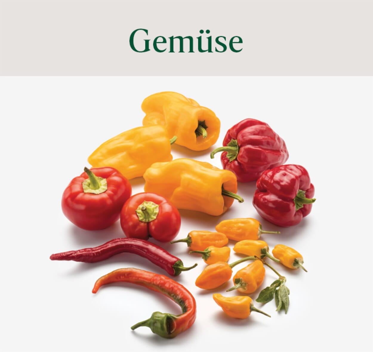 Gemüsesämereien & Gemüsepflanzen