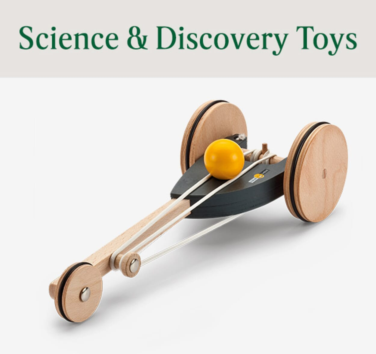 Science & Discovery Toys