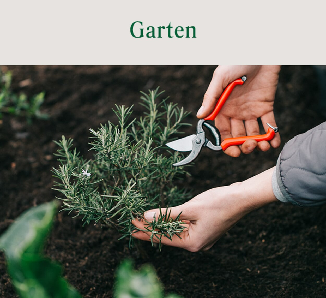 Sortiment Garten