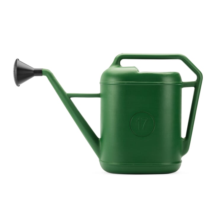 Watering Can Camino, Large