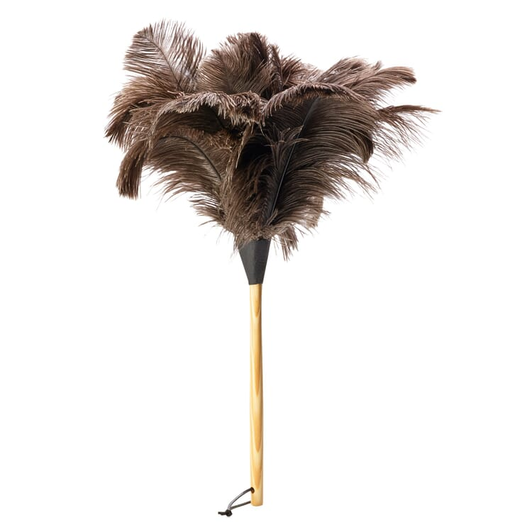Ostrich Feather Duster, Short