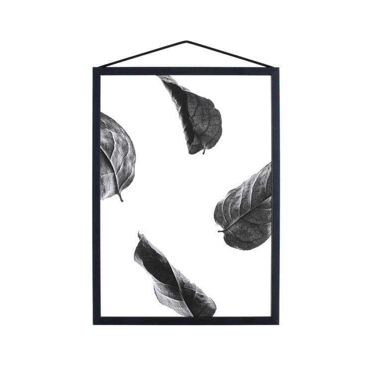 Poster Floating Leaves
