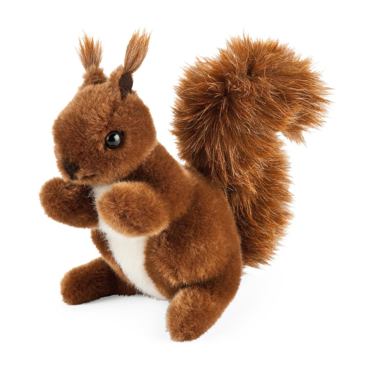 Kösener Eichhörnchen Klein
