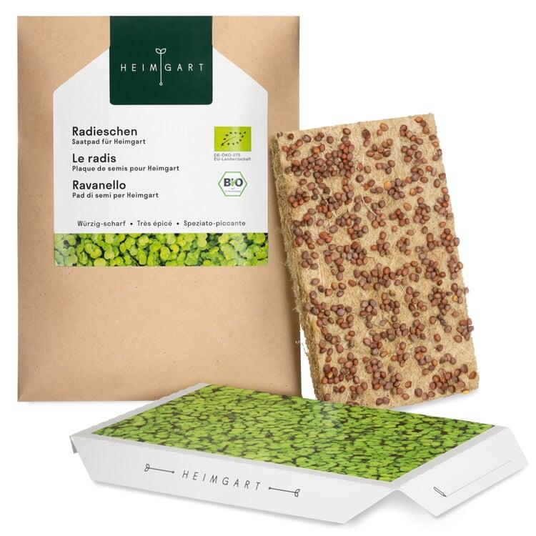 Microgreens-Saatpad Radieschen