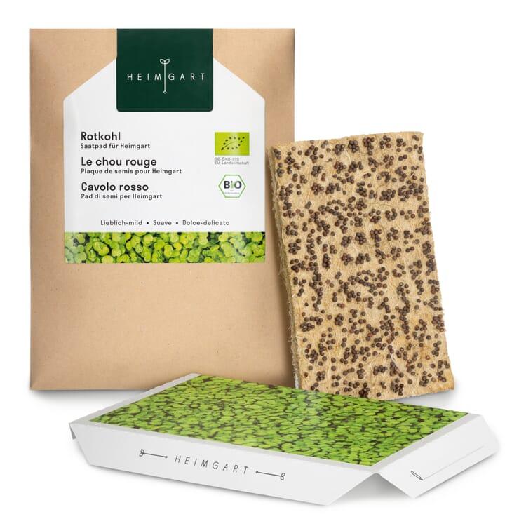Microgreens-Saatpad, Rotkohl