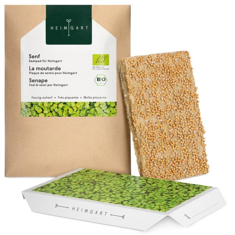 Microgreens-Saatpad Senf