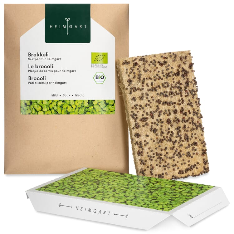 Seed Pad for the Microgreens Sprouts Kit, Broccoli