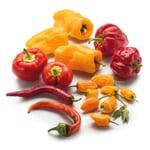 Gemüsesamen 'Besondere Chilis und Paprika'