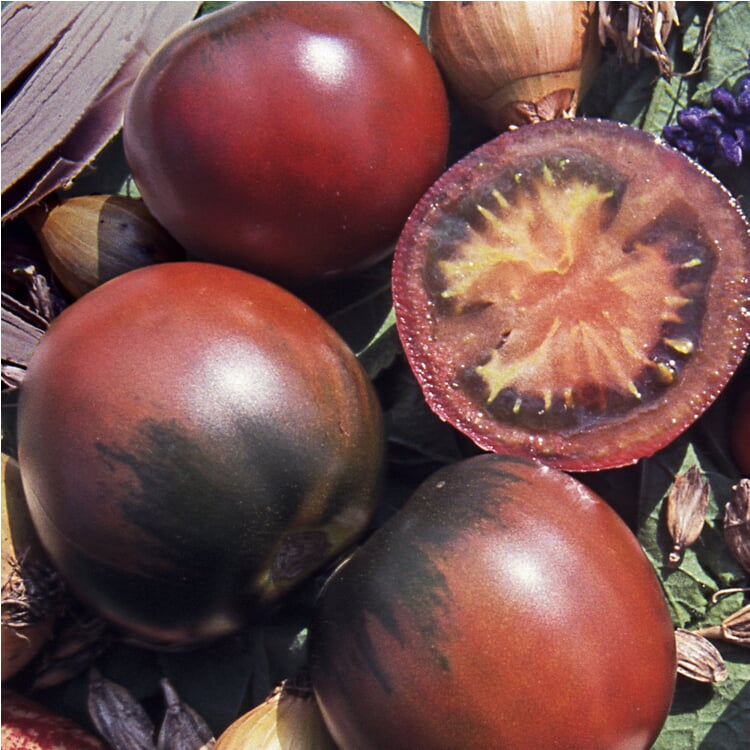 Gemüsesamen 'Tomaten in allen Farben'