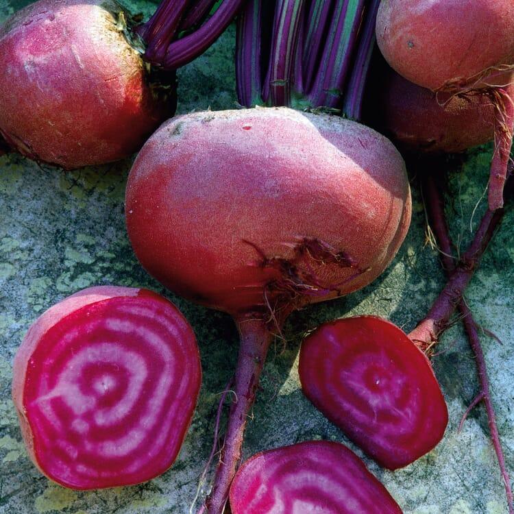 Gemüsesamen 'Gemüsespezialitäten europäischer Regionen'