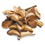 Porcini Mushrooms from Piedmont