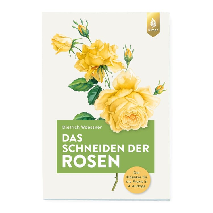 Das Schneiden der Rosen