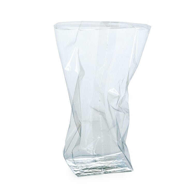 Cellophane Bag Large
