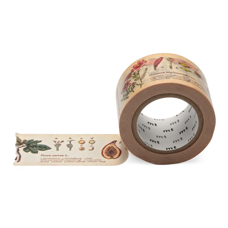 Paper Tape Plant