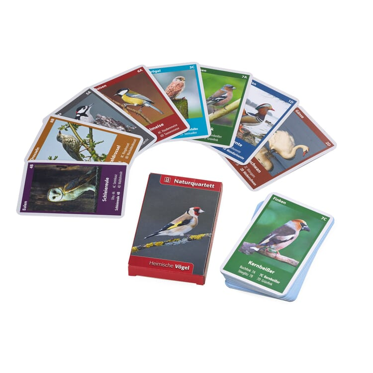 Quartet Game Central European Birds
