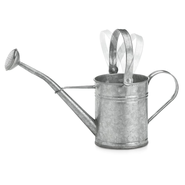 Child's Sheet Steel Watering-Can
