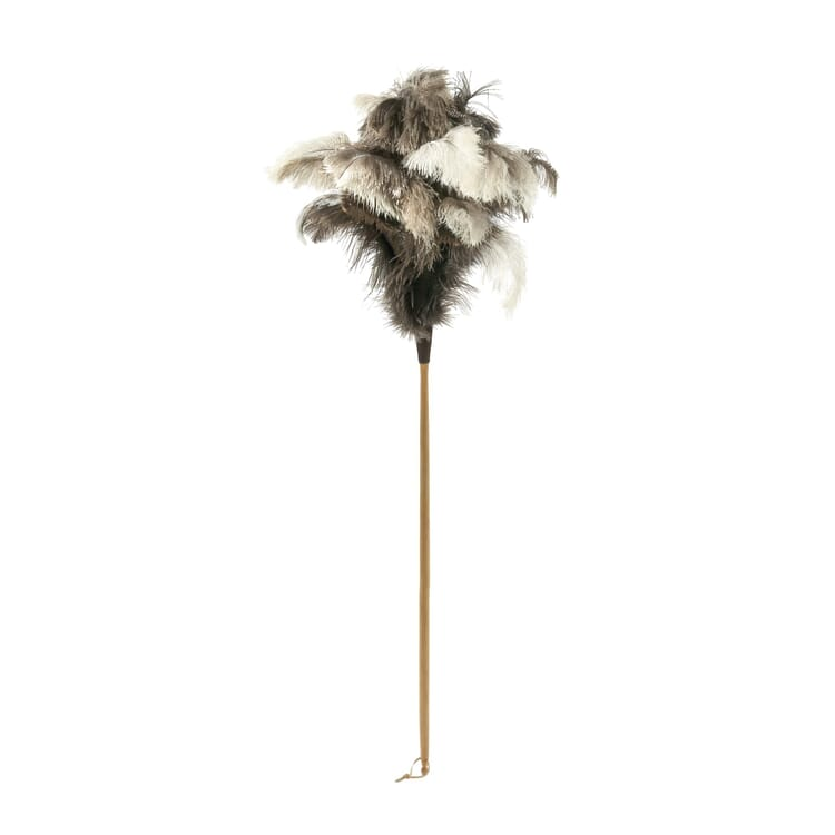 Ostrich Feather Duster, Long
