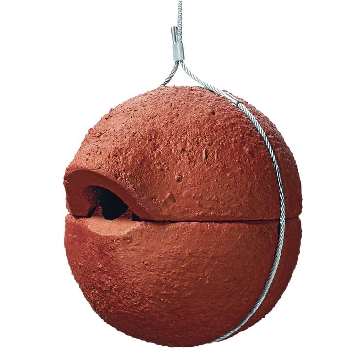 Wren's nesting sphere