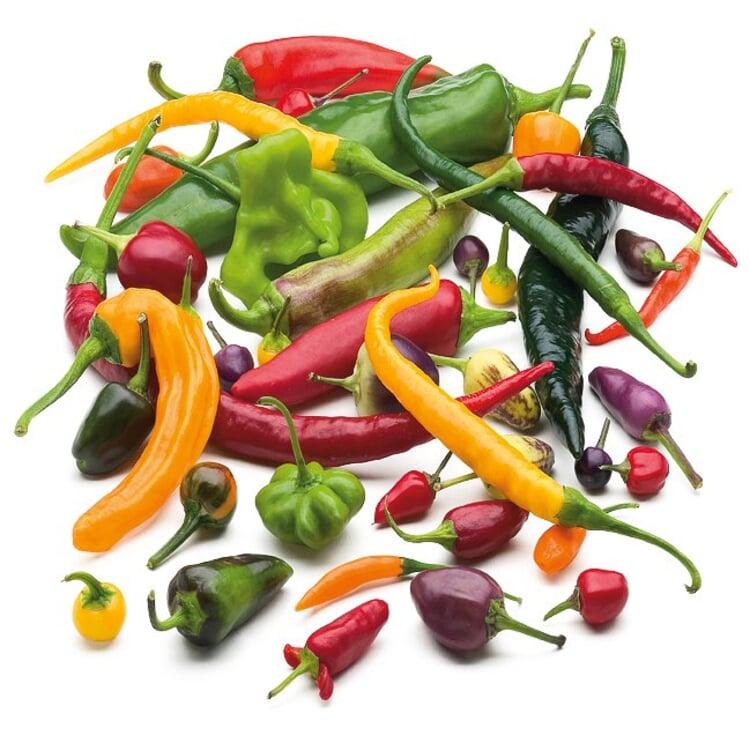 Gemüsesamen 'Balkonfruchtgemüse'