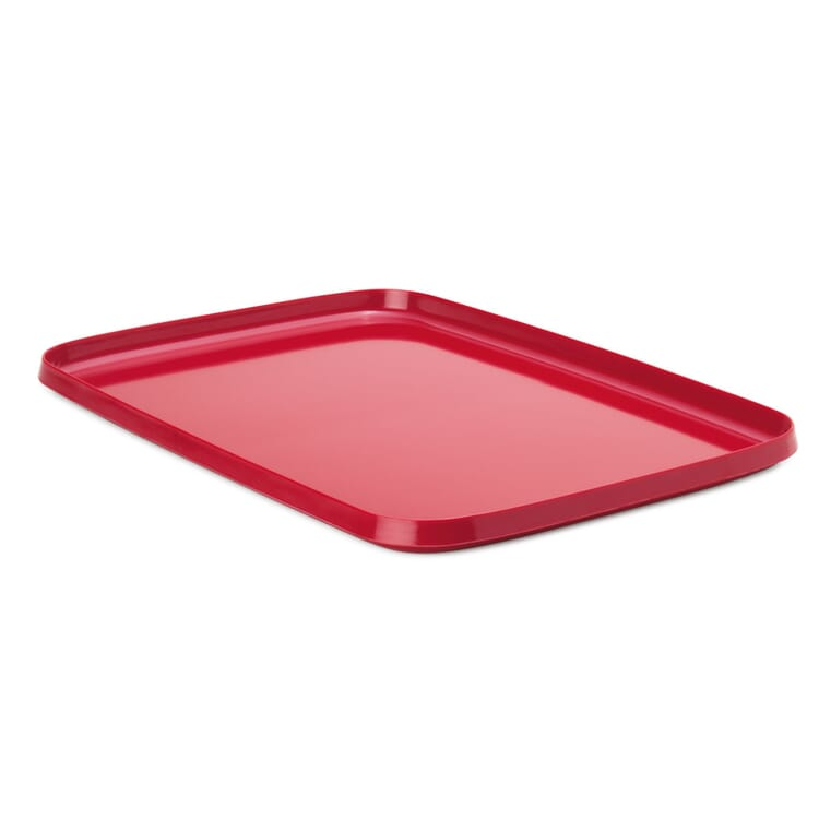 Tray Made of Melamine Resin, Large