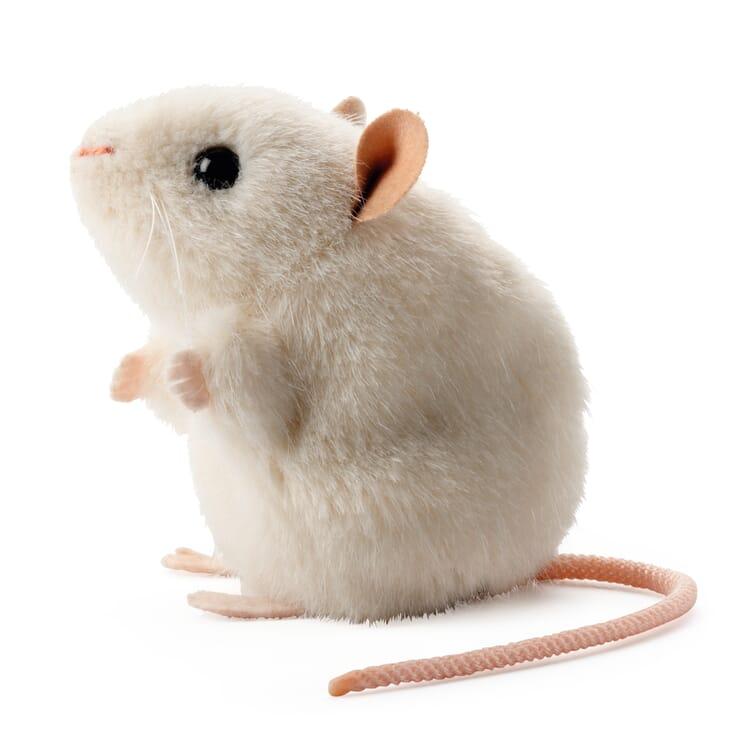 Kösener weiße Maus