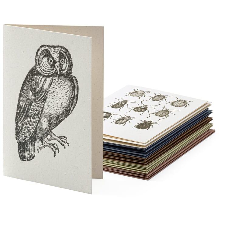 Grußkarten Tiermotive sortiert