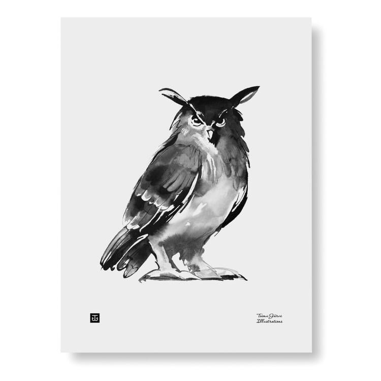 Teemu Järvi Print, Owl