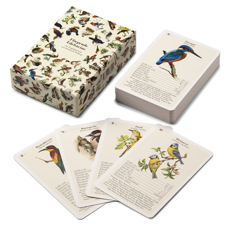 Quartet Game Bird Species plus QR-Information Bird Songs