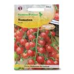 Gemüsesaatgut Obsttomate 'Freude'