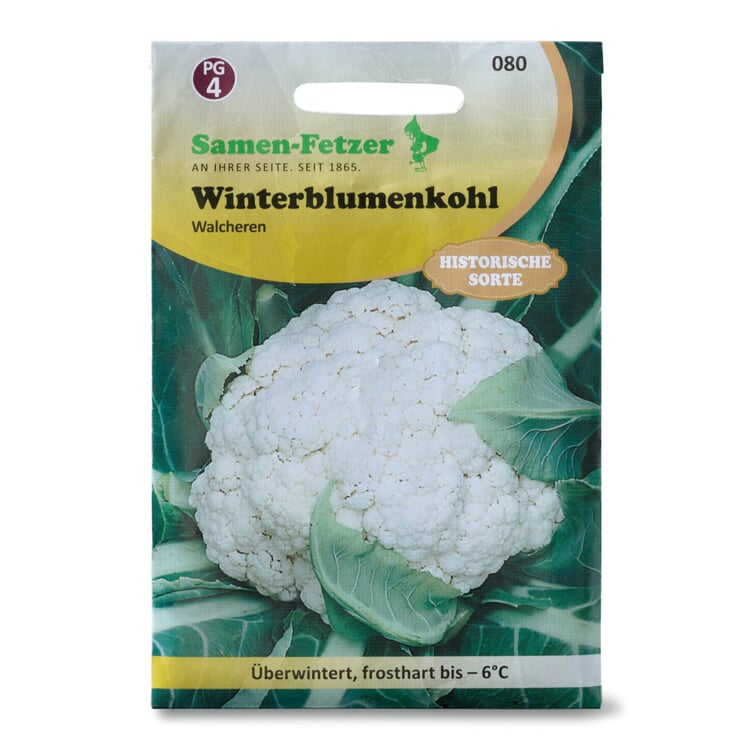 Gemüsesaatgut Winterblumenkohl 'Walcheren'