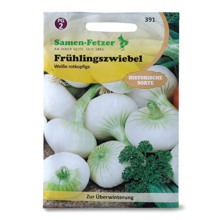 Gemüsesaatgut Frühlingszwiebel 'Weiße'