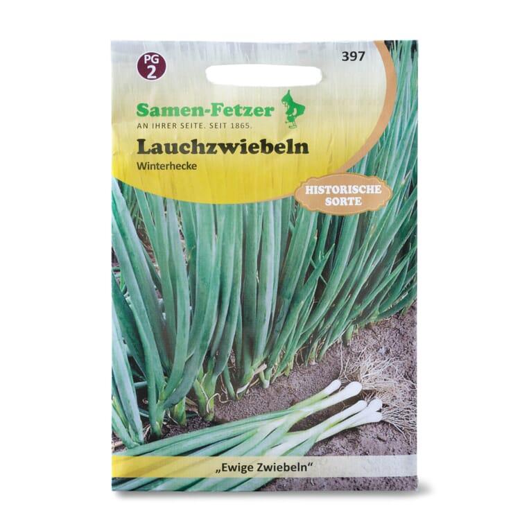 Gemüsesaatgut Winterheckenzwiebel
