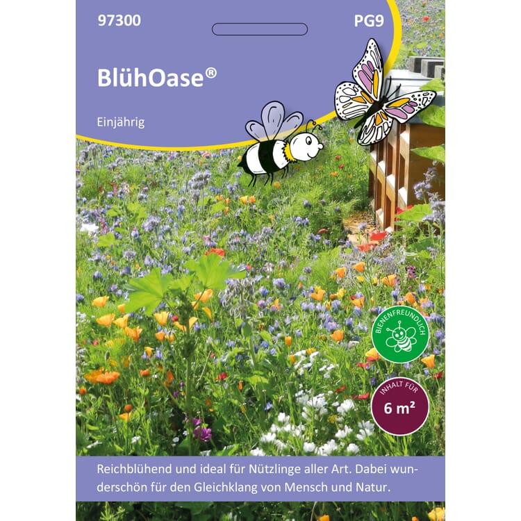 Saatgutmischung Blumenwiese für Nutzinsekten ganzjährig