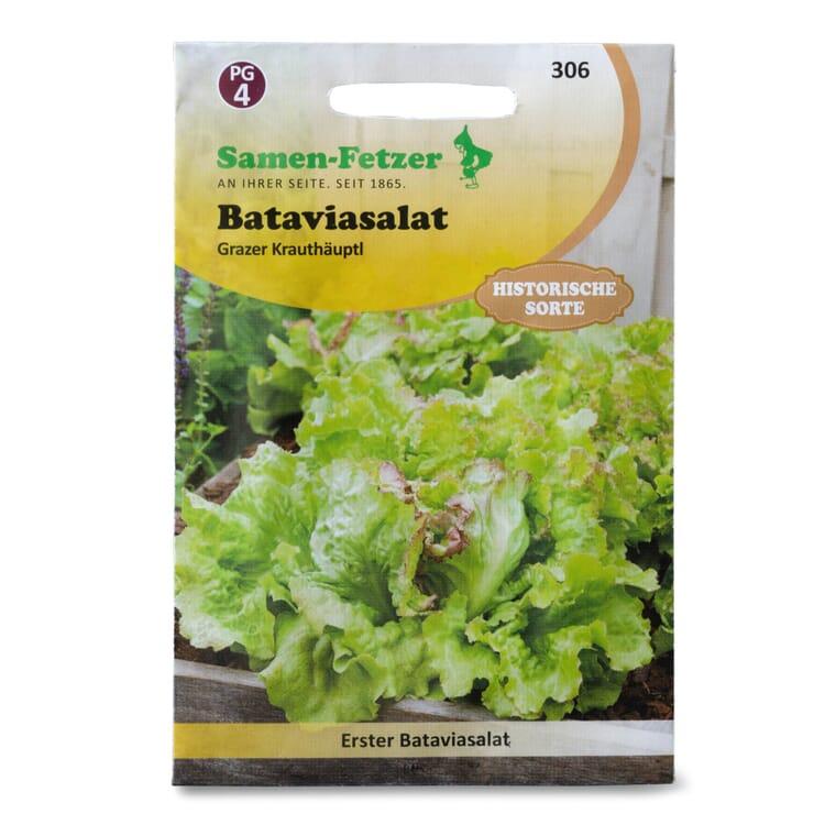 Gemüsesaatgut Eissalat 'Grazer Krauthäuptl'